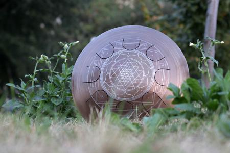 Гуда Фризби. Дизайн Sri-Yantra. фото 7
